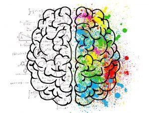 cerebro creativo y lógico